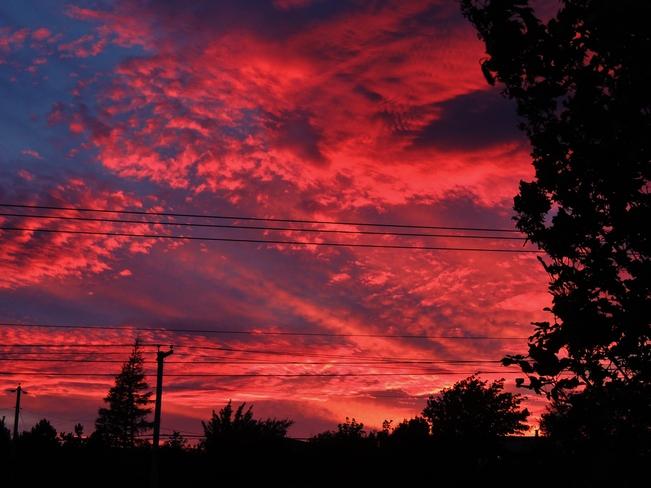 Red Sky Sunset St. John's, Newfoundland and Labrador Canada