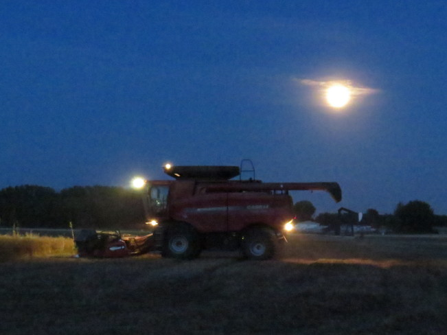 Harvesting under the Moon Devon, Alberta Canada