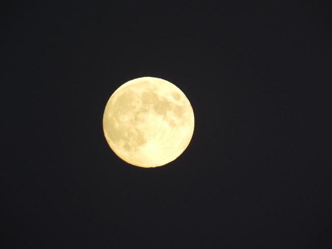 Pleine lune... Saint-Roch-des-Aulnaies, Québec Canada