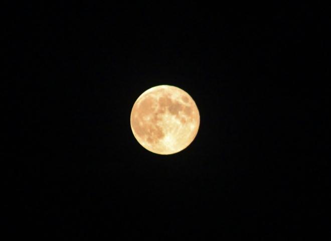 Harvest moon pt 2 Seaforth, Ontario Canada