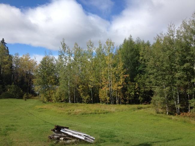 fall colours Jellicoe, Ontario Canada