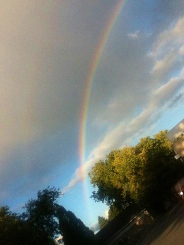 Caught Rainbow Cornwall, Ontario Canada