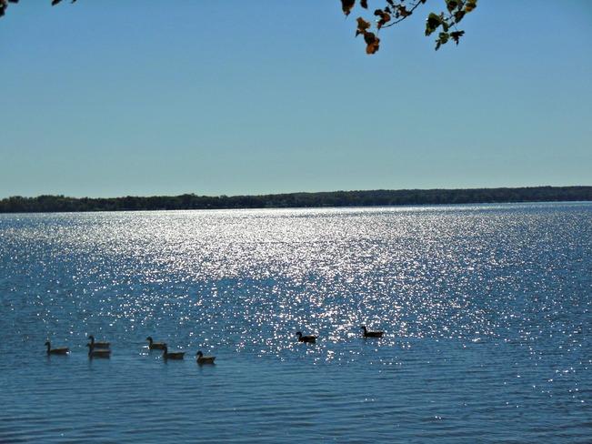 Gorgeous day Belleville, Ontario Canada