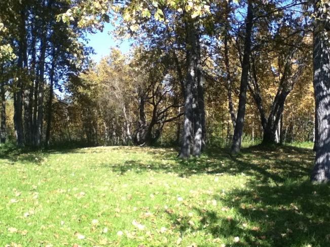 Moosonee Park. Moosonee, Ontario Canada