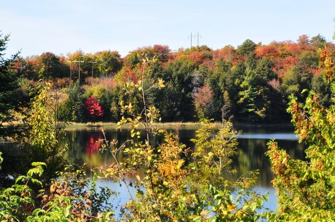 Fall colors Elliot Lake, Ontario Canada