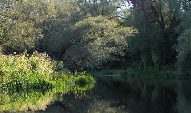 River in Beaver Valley Fergus, Ontario Canada