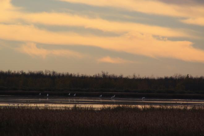 Lister Lake sunrise Tofield, Alberta Canada