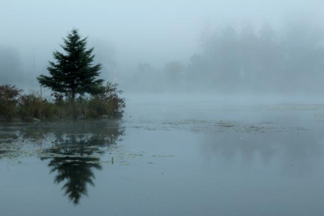 Foggy morning at The Point Sydenham, Ontario Canada