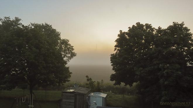 Foggy Tilbury, Ontario Canada
