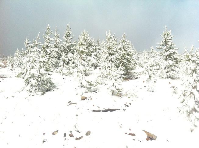 new snow Cranbrook, British Columbia Canada