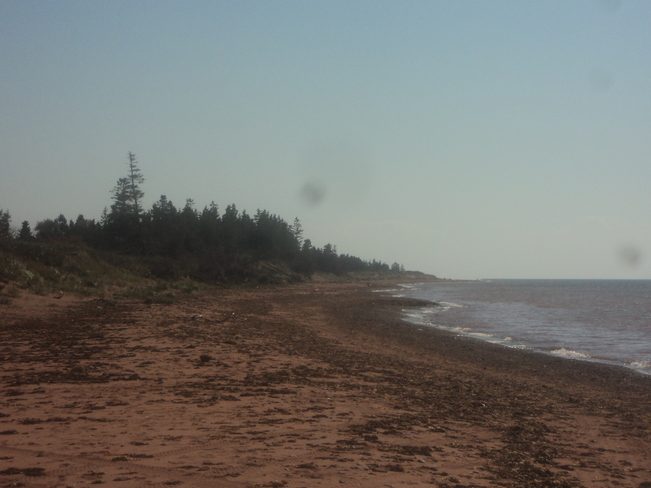 at beach O'Leary, Prince Edward Island Canada