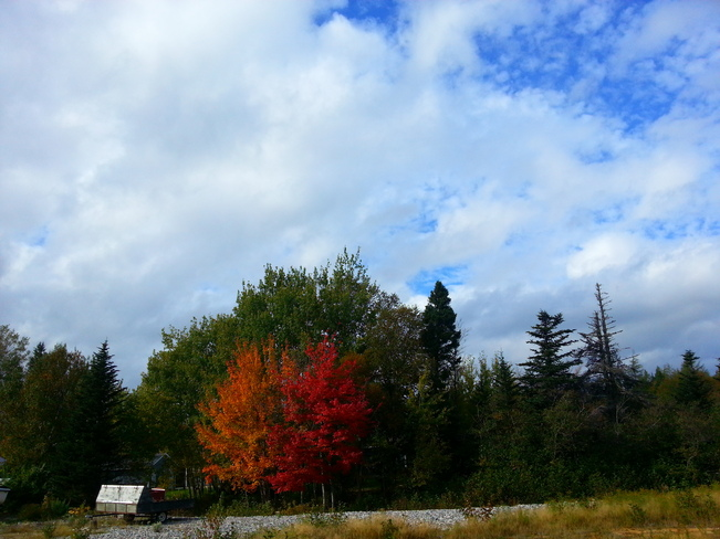 Oct 2 Glovertown, Newfoundland and Labrador Canada