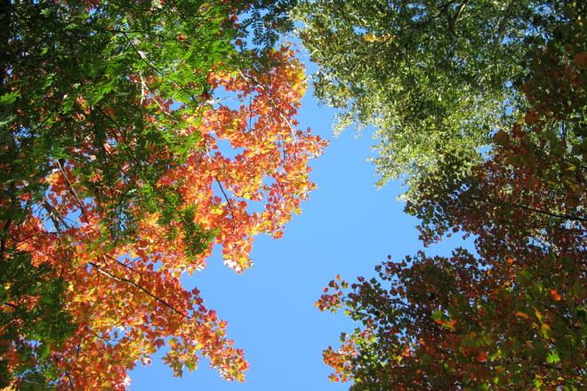 Into the Blue Hillsborough Park, Prince Edward Island Canada