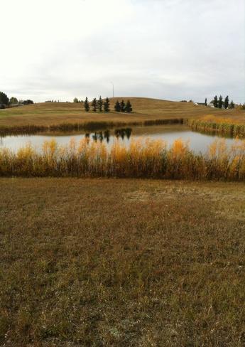 Beautiful Fall Afternoon Lloydminster, Saskatchewan Canada