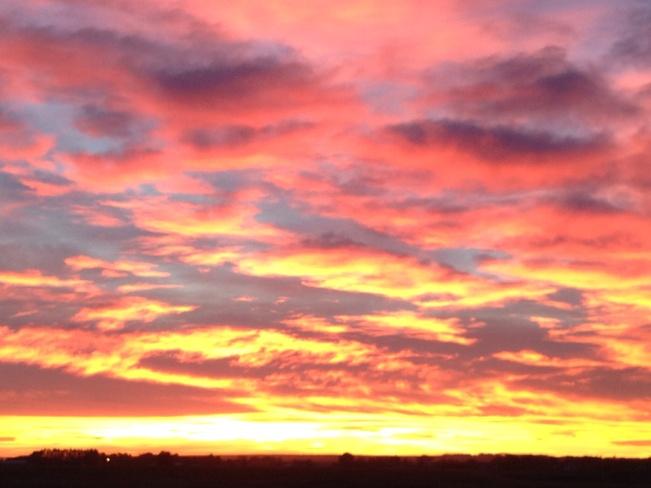Gorgeous sunset tonight........ Desert Blume, Alberta Canada