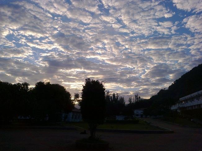 Morning clouds Pollachi, Tamil Nadu India