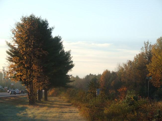 Sunny Fall Mornin' Petawawa, Ontario Canada