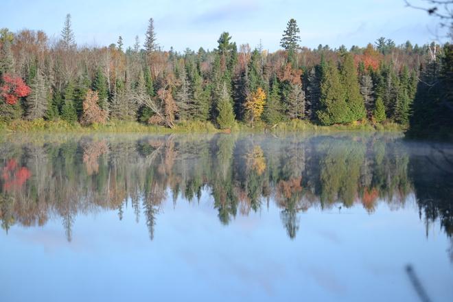 reflections Sturgeon Falls, Ontario Canada