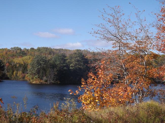 upper end of lumsden pond Wolfville, Nova Scotia Canada