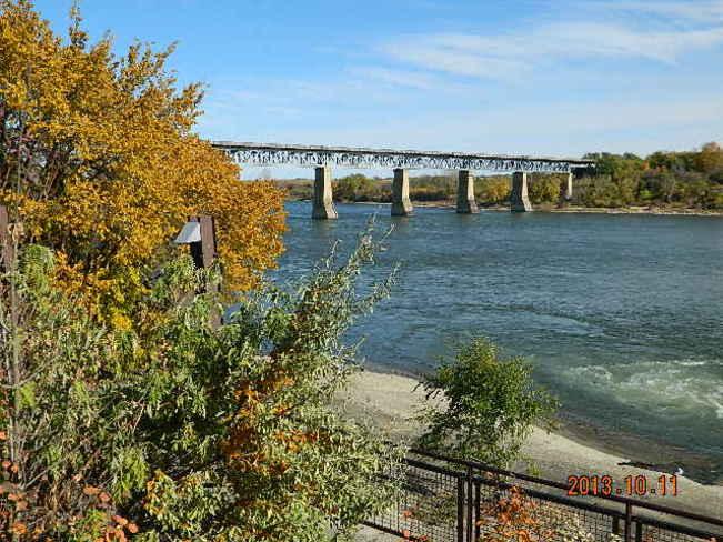 fall colors Saskatoon, Saskatchewan Canada