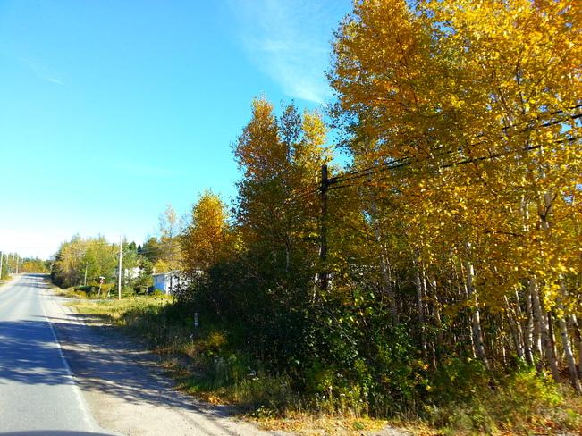 Oct 14 Glovertown, Newfoundland and Labrador Canada