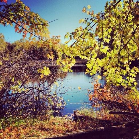 Beautiful Fall Cambridge, Ontario Canada