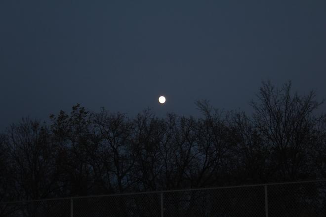 Nearly Full Moon Winnipeg, Manitoba Canada