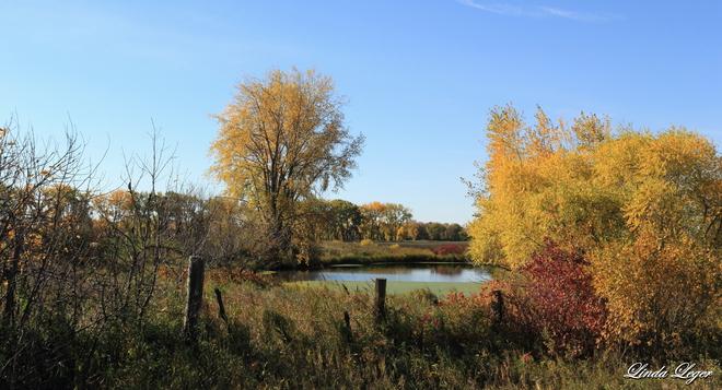 Secluded Pond Portage La Prairie, Manitoba Canada