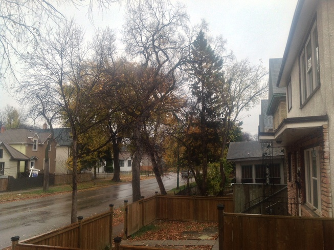 Chilly Winnipeg Day. Winnipeg, Manitoba Canada
