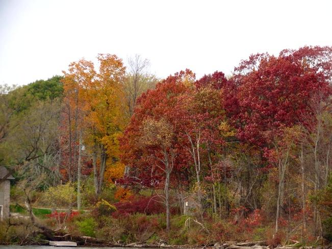 fall colours Gananoque, Ontario Canada