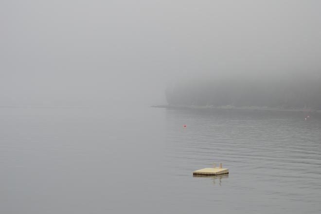 Foggy Sunshine Coast, British Columbia Canada