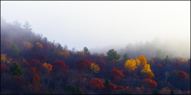 Elliot Lake, cold morning with fog. Elliot Lake, Ontario Canada
