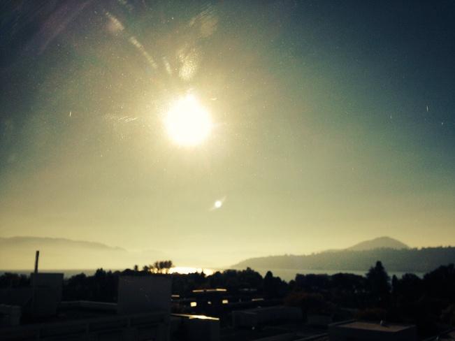 Gorgeous sunshine in Okanagan! Kelowna, British Columbia Canada