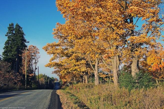 Backroad Markham, Ontario Canada