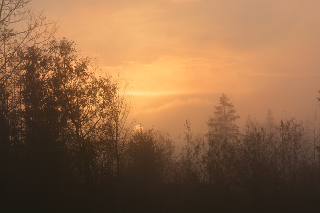 'Sunrise Mystic Morning' Prince George, British Columbia Canada