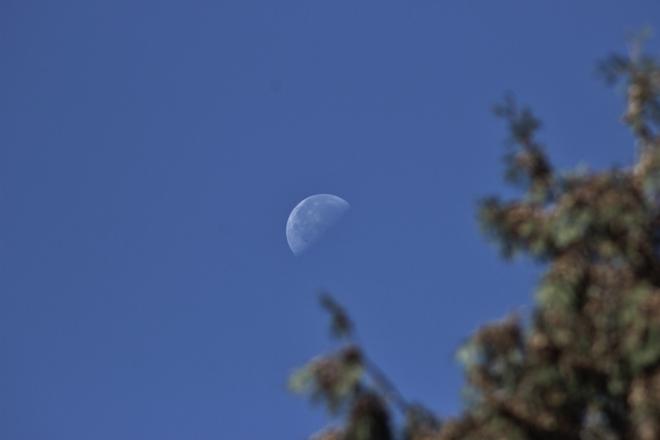 morning moon Seaforth, Ontario Canada