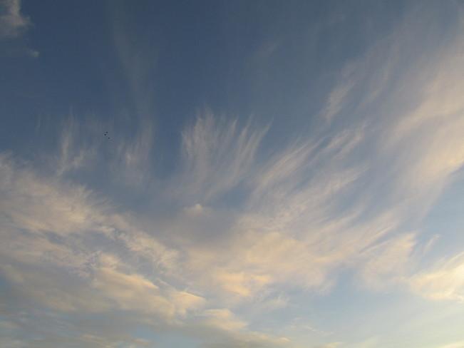 Sky Waves Calgary, Alberta Canada