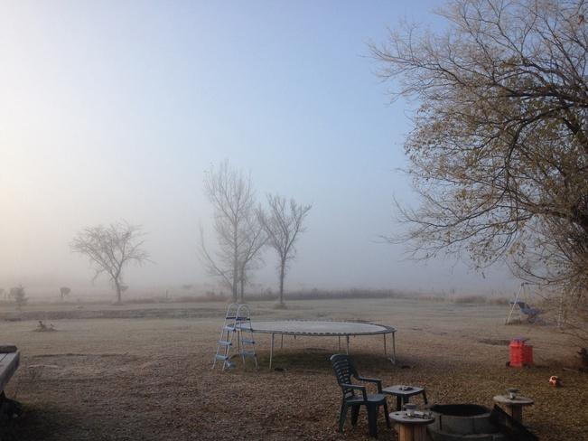 Mornin Frost Martensville, Saskatchewan Canada