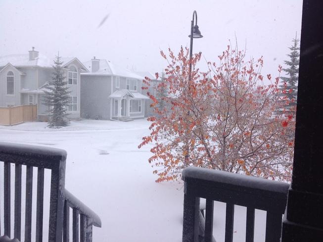 Snow in North West Calgary Calgary, Alberta Canada