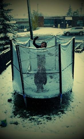 luv'n the snow Calgary, Alberta Canada