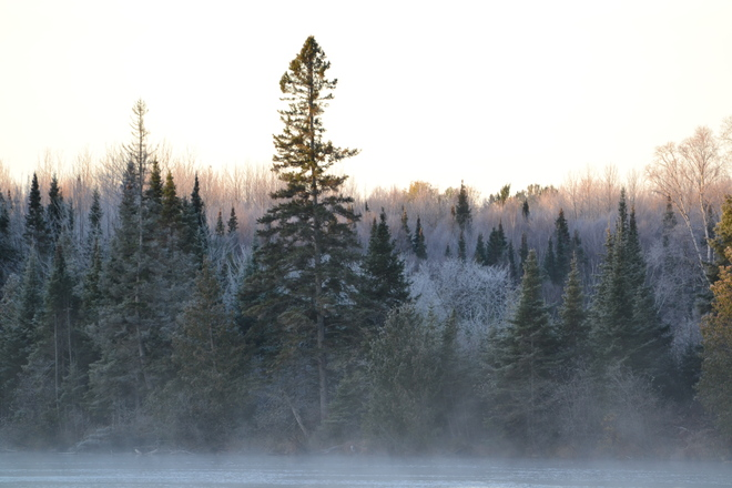 misty morning Sturgeon Falls, Ontario Canada