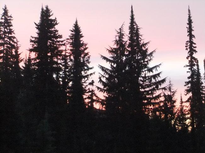 morning scene on the way Fauquier, British Columbia Canada