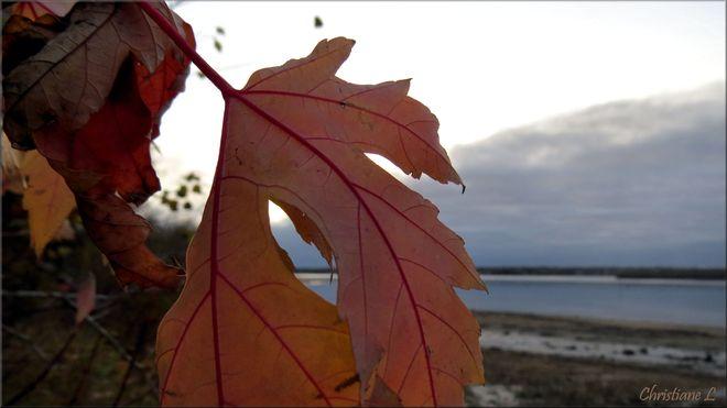 Photo du matin Trois-Rivières, Québec Canada