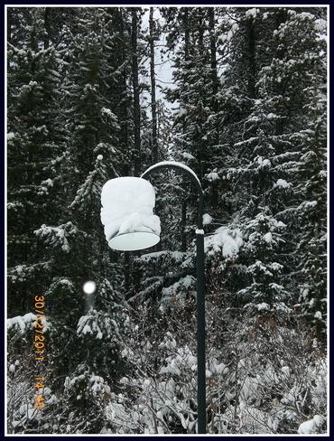 Snowy snowy Lake Louise, Alberta Canada