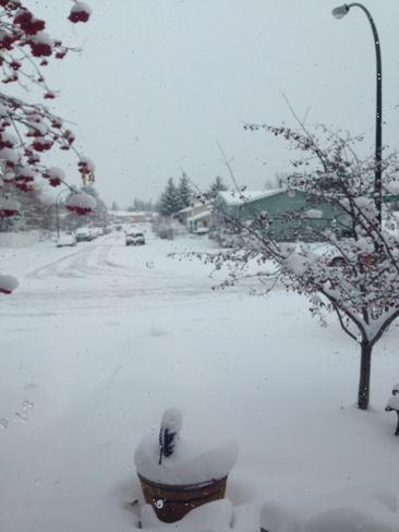 Winter is here! Red Deer, Alberta Canada