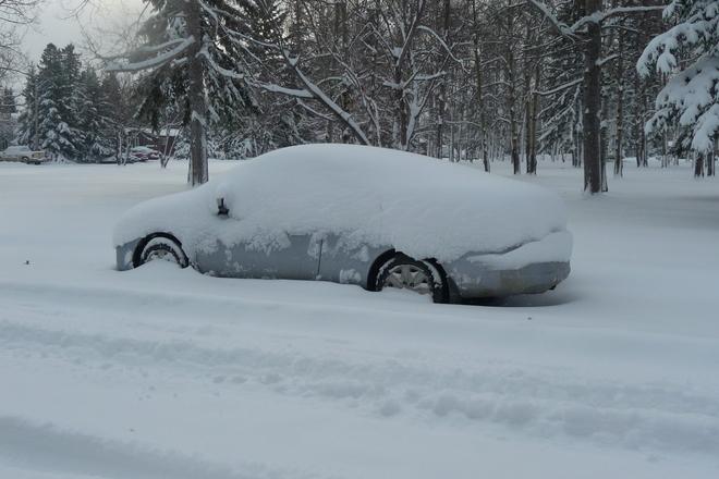 Buried in the Snow Sundre, Alberta Canada