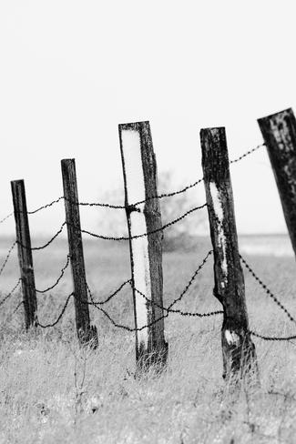 Good Fences. Brooks, Alberta Canada