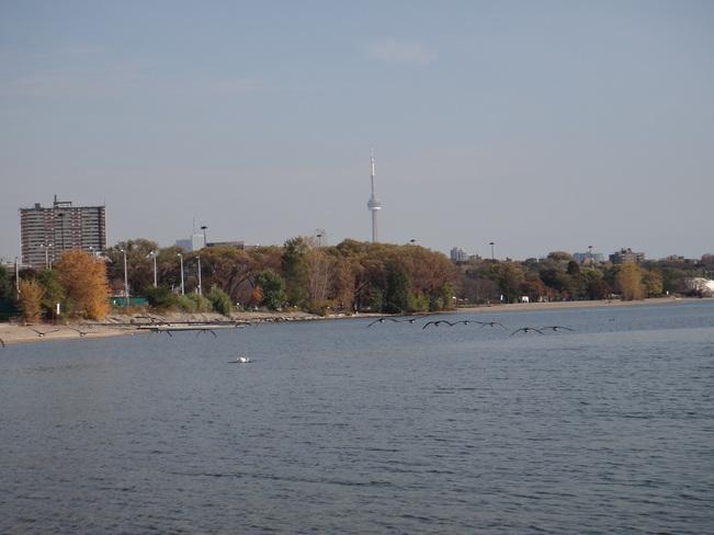 Lake Ontario Toronto, Ontario Canada
