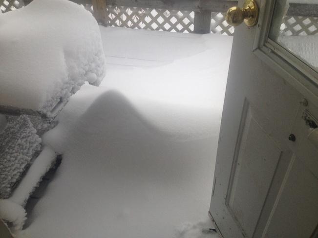 Greetinge at the back door Clavet, Saskatchewan Canada