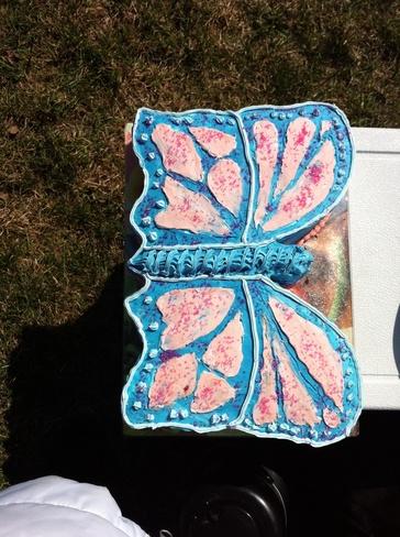 Butterfly cake on grass Ottawa, Ontario Canada